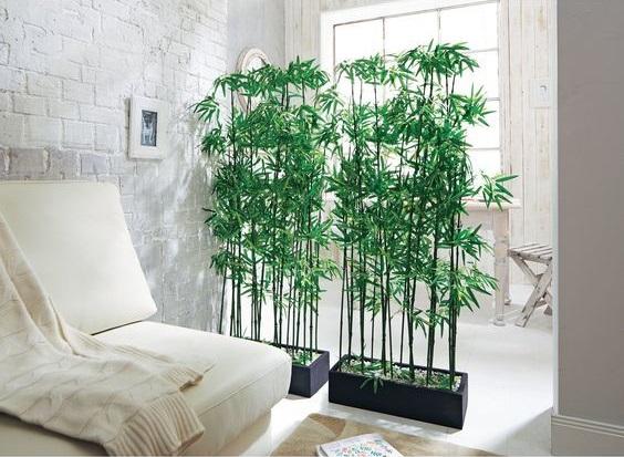 dinding partisi tanaman